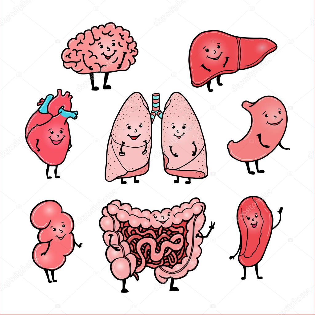 Set Of Funny Human Organs With Cute Smiling Faces Stock Vector