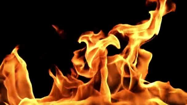 Flame burning closeup view.