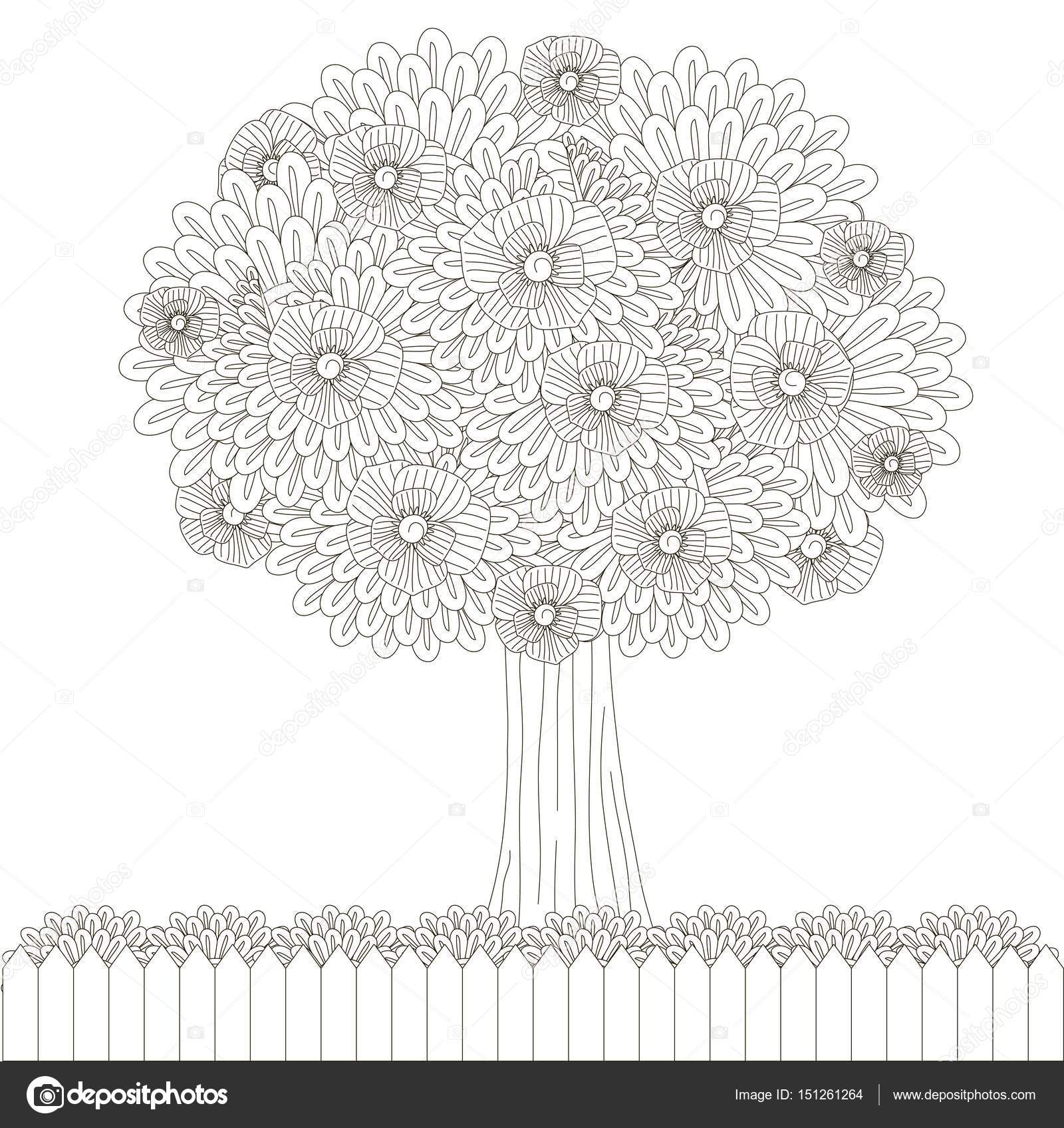 Coloriage Arbre Anti Stress.Arbre Fleuri Barriere Pour Coloriages Illustration Vectorielle