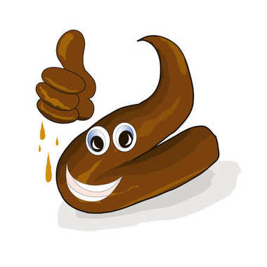Cartoon brown excrement dung, shit, happy emotional with a raised thumb stock vector illustration on white