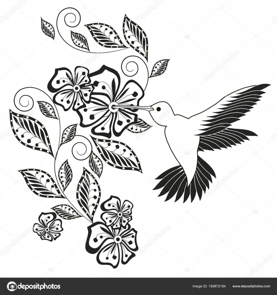 Monochrome Hand Drawn Decorative Floral Element Hummingbird For