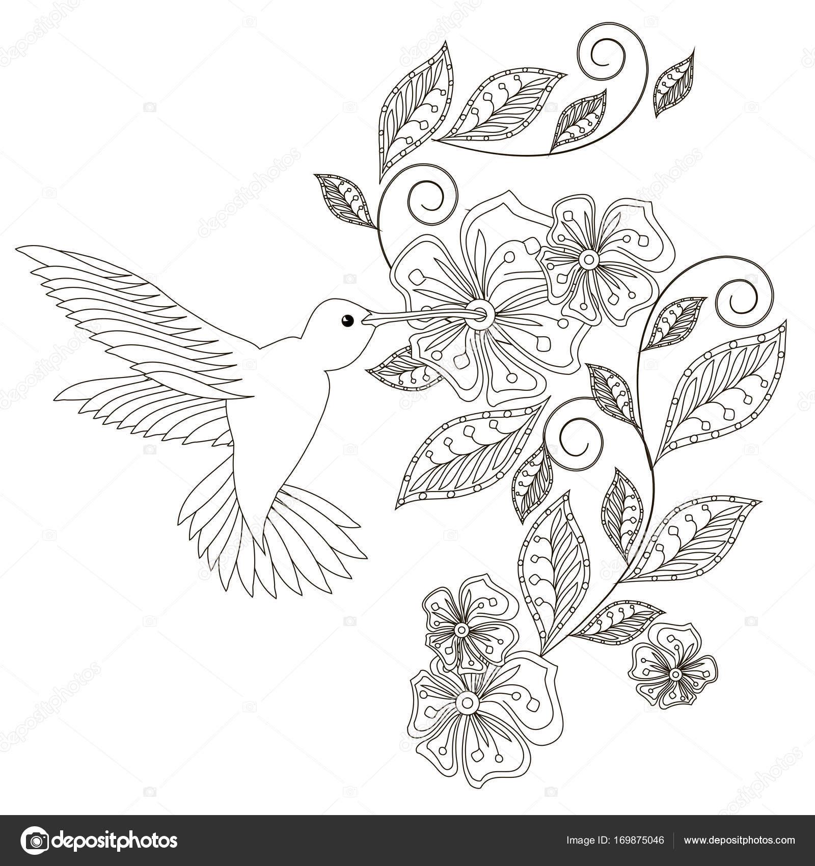 Monochrome Hand gezeichneten floralen Dekorationselement, Kolibri ...
