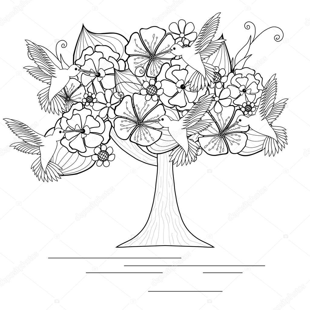Монохромный цветущее дерево с колибри для раскраска, анти ...