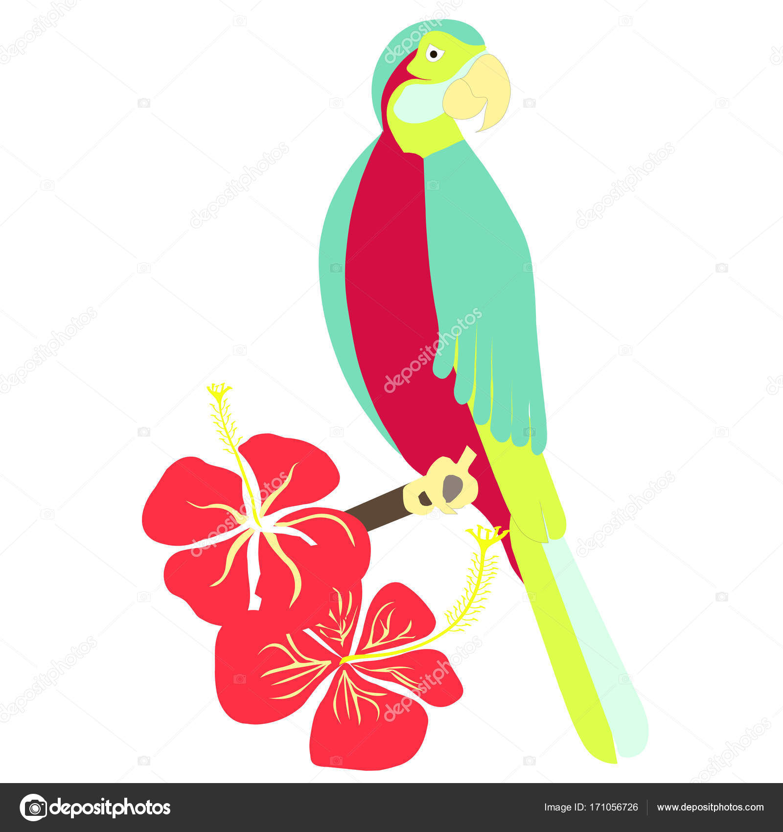 Hand drawn colorful parrot, hibiscus flower for coloring page and ...