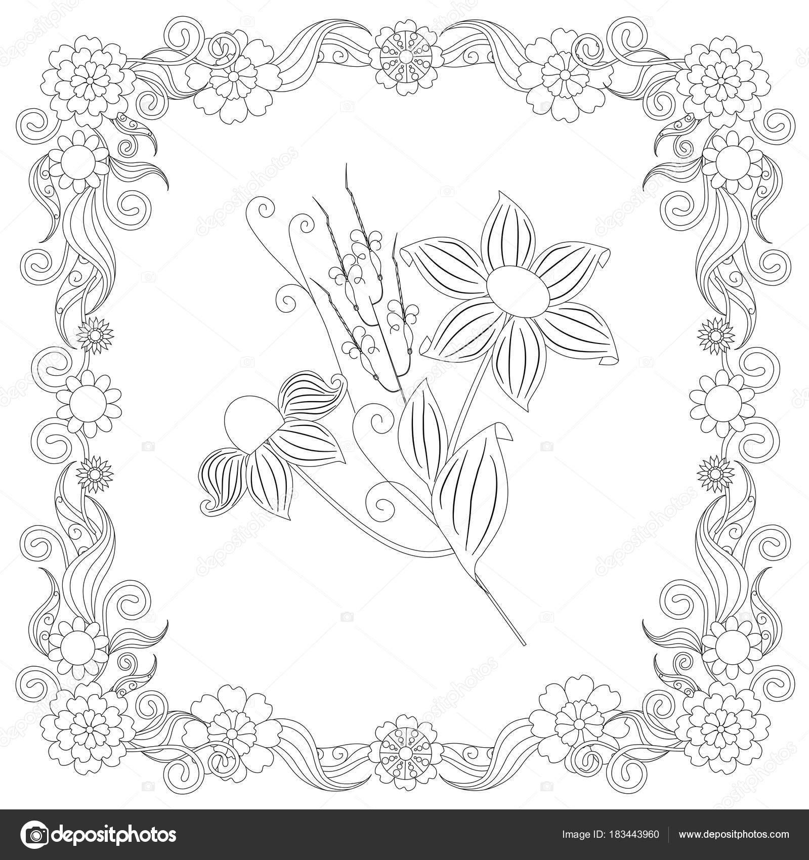 Monochrom Doodle Handgezeichnete Blumen Rahmen Stress Lager Vektor ...