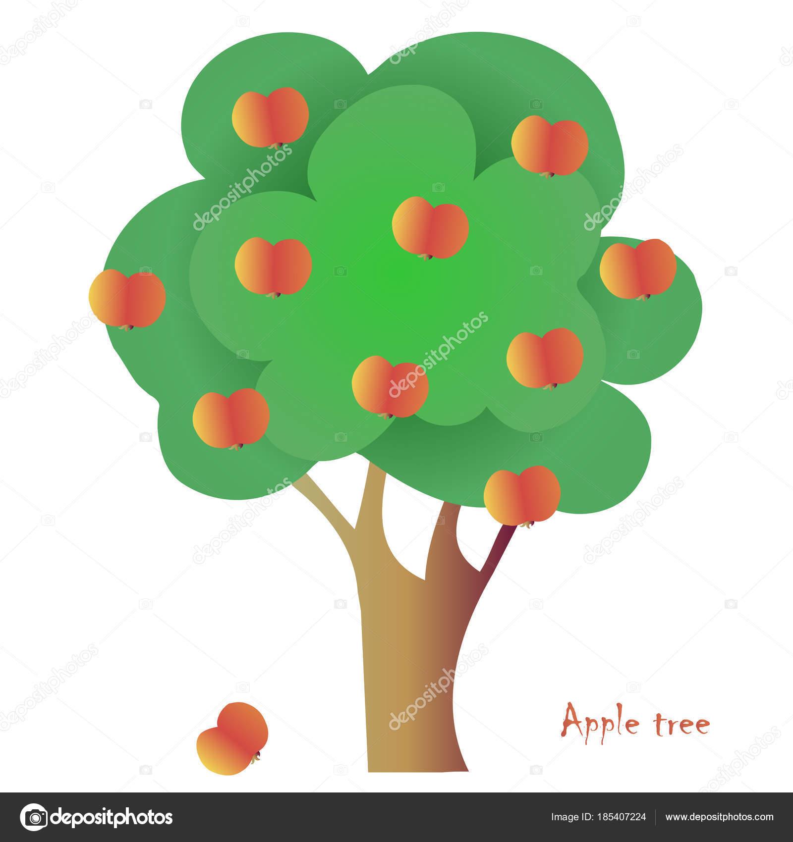 Arbol Con 10 Manzanas Para Colorear árbol Manzana Vector Escudo