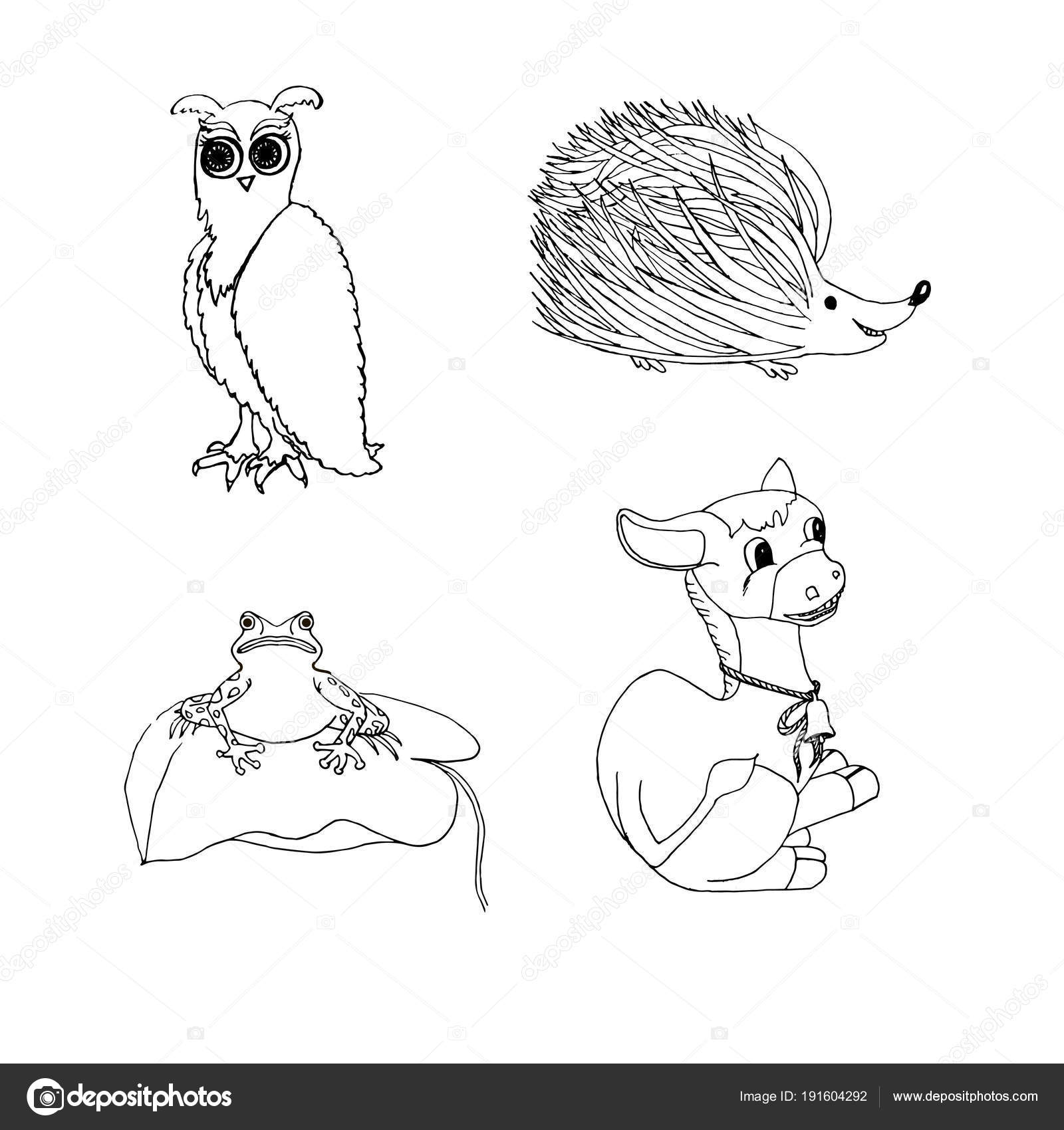 Animales Para Colorear Página Mano Dibujada Rana Buho Burro ...