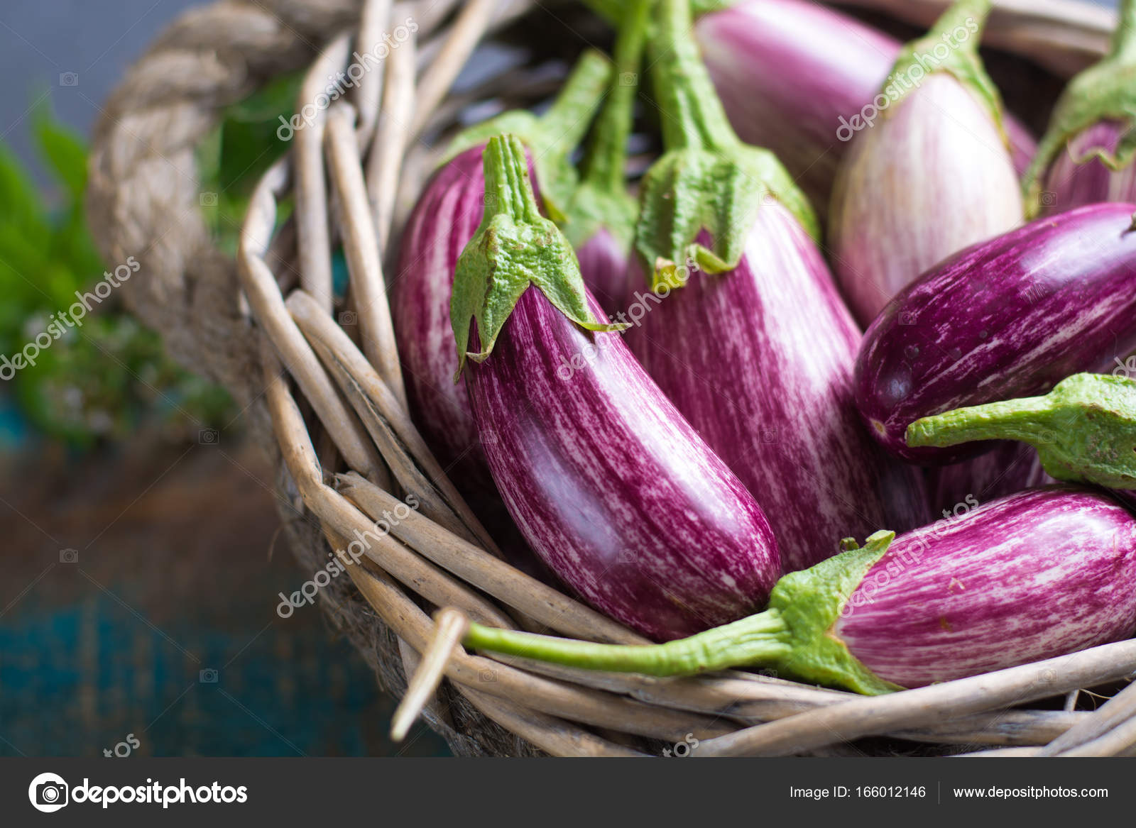 vegetarian menu template small fresh eggplants on wooden table
