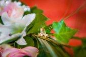 Kroužky z nevěsty a ženicha na květiny. Novomanželé atributu. Zlaté prsteny s drahými kameny