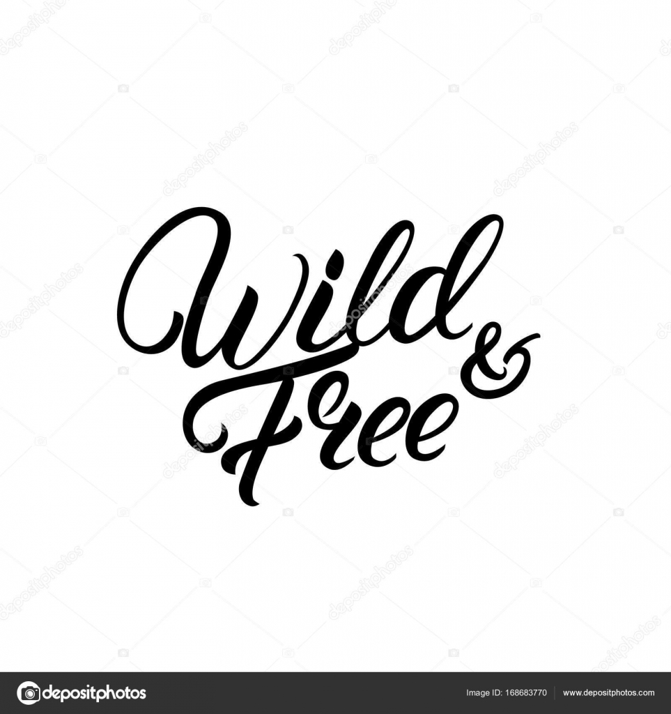 Wild and free hand written lettering quote stock vector