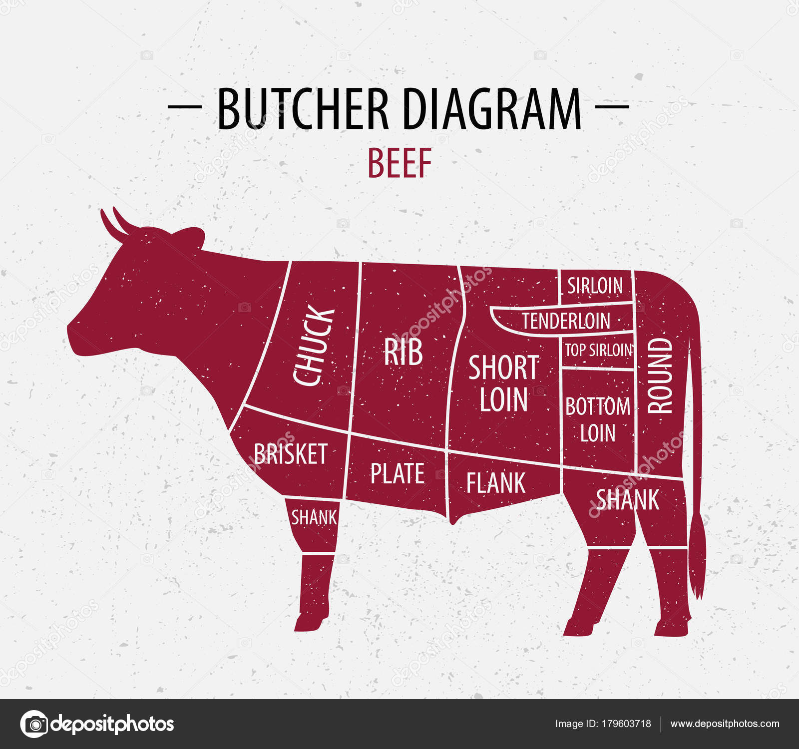 Cut of beef poster butcher diagram for groceries meat stores cut of beef poster butcher diagram for groceries meat stores butcher shop farmer market poster for meat related theme cow silhouette pooptronica