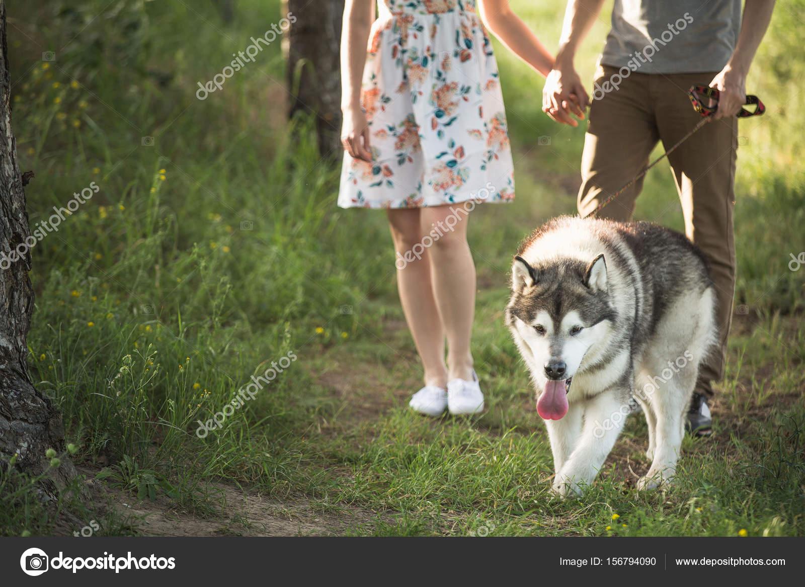 couple with a dog — stock photo © scharfsinn #156794090