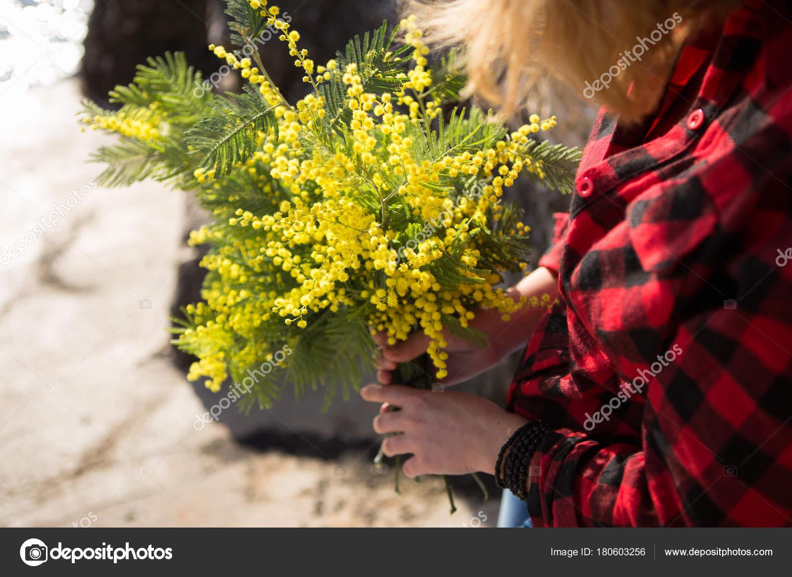 фото цветов цветущих весной на клумбе