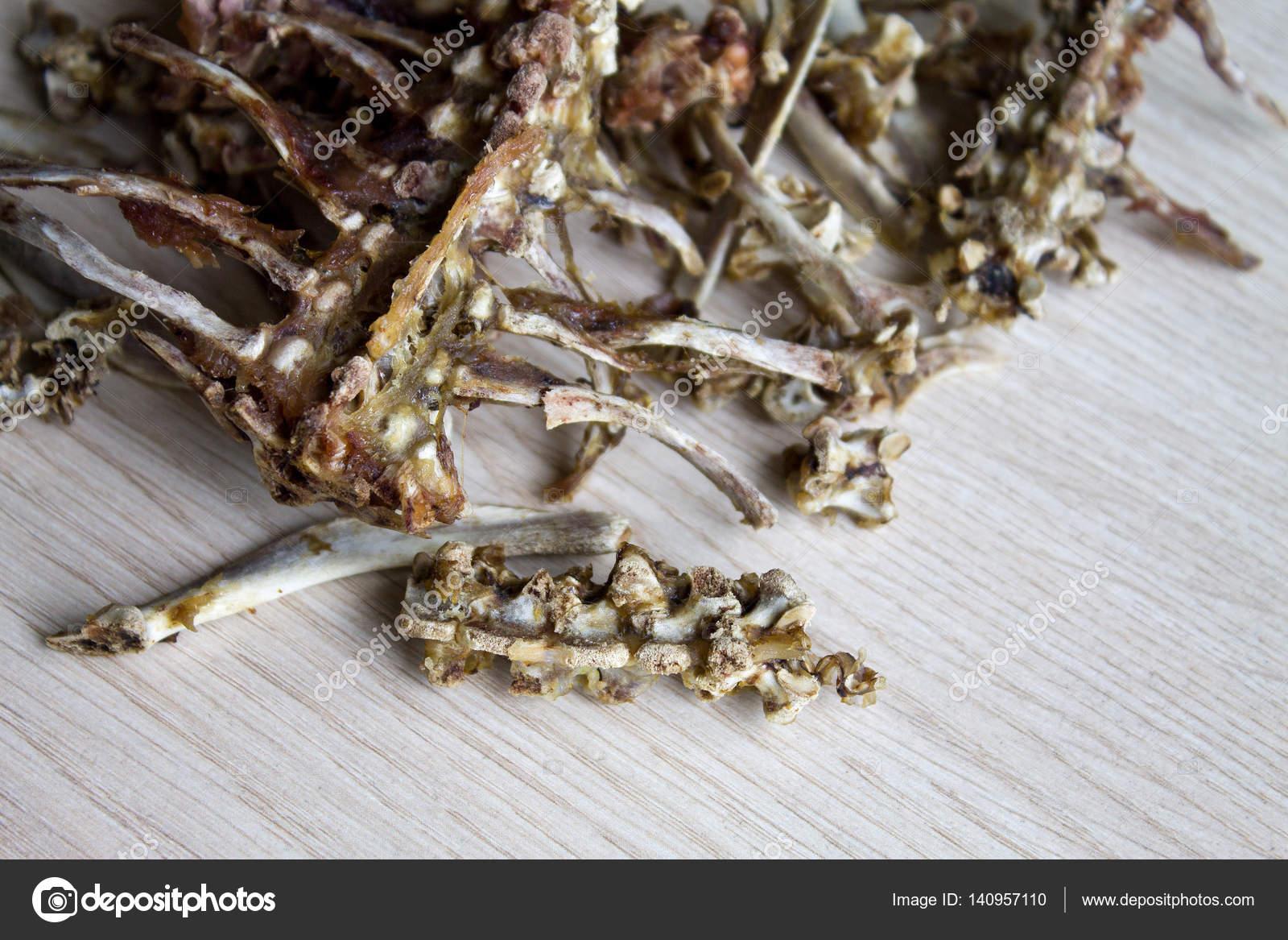 Knochen auf weißem Hintergrund — Stockfoto © master_18.mail.ru ...