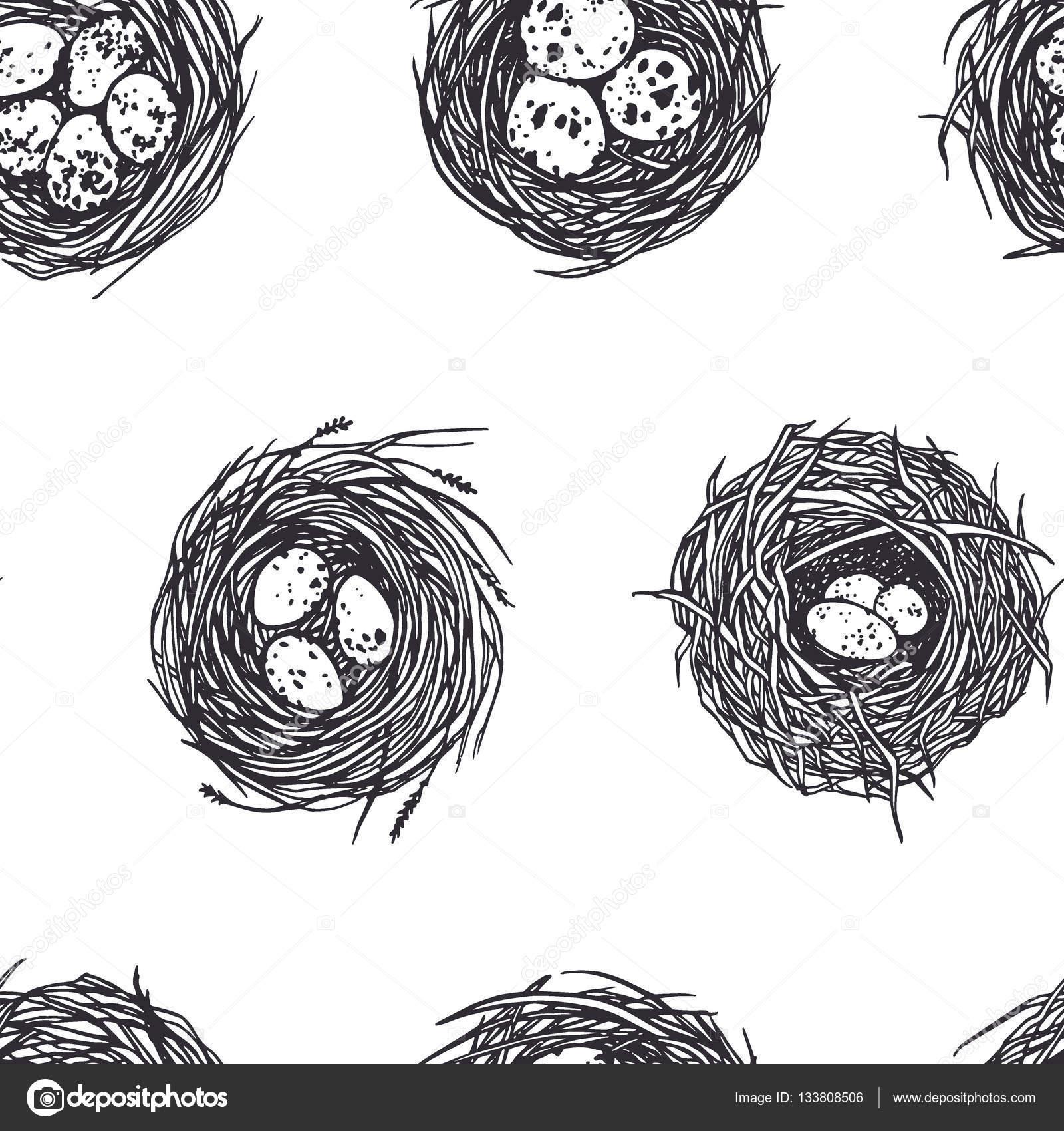 Patron para nidos dibujados a mano — Vector de stock © Ezhevica ...