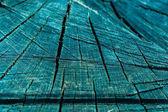 Textura pařez