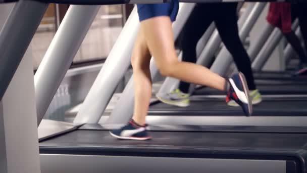 Beine vieler Menschen bei Übungen auf dem Laufband im Sportverein.