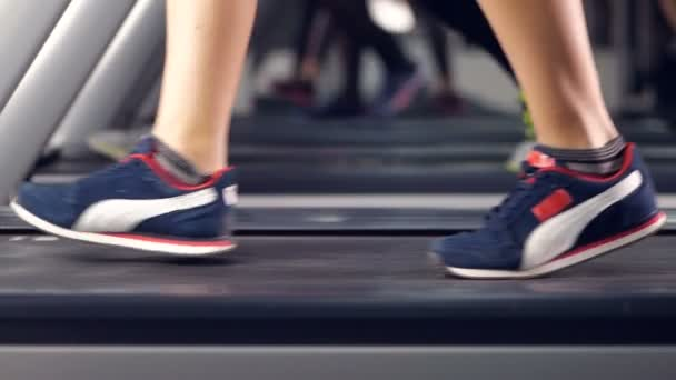 Nohy mnoha lidí, kteří dělají cvičení na běžeckém pásu v sportovního klubu. Zpomalený pohyb.