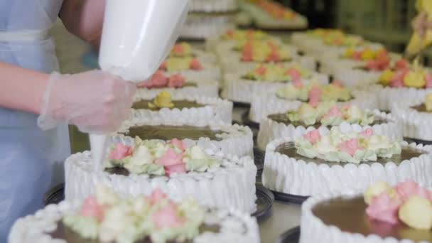 Confectioners hands decorating cakes on conveyor. Cake production process.