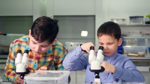 Elementární věku chlapce dělat vědecké experimenty ve školní laboratoři