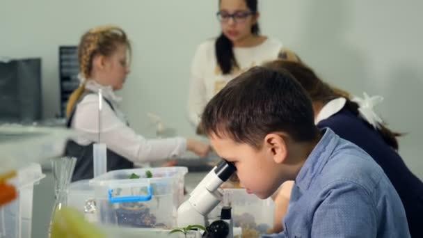 Děti studium biologie, chemie v biologii třídě základní školy. Dívá do mikroskopu