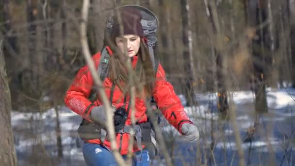 Female Hiker Hiking in winter forest. Travel, Trekking, Extreme Sport concept.
