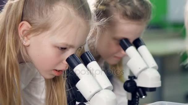 die Nahaufnahme der Grundschulmädchen, die in die Mikroskope schauen. 4k.