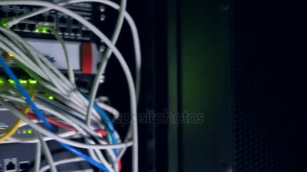 Banda mnoha patchcordy zapojen do síťového přepínače. 4k