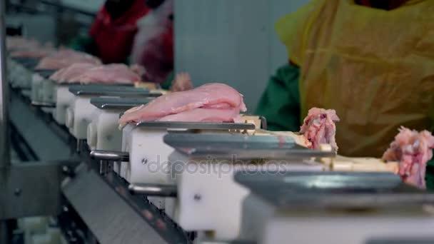 Pracovníky v oblasti ochranné oblečení místo úhrady kuřecí prsa na dopravníkové vaničky