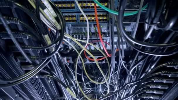Egymásba fonódó kábelek belsejében egy nagy kapcsoló szekrény.