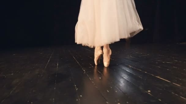 Small ballet pointe steps in detail on wooden floor.