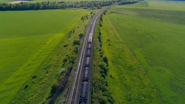 Train with freight cars crossing green summer field. 4K.