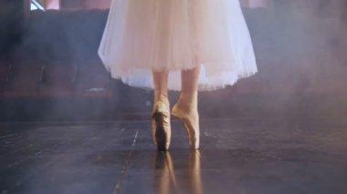 e412a69b3633 Παραγνωρισμένη κυρία στο Τουτού φόρεμα. Γκρο πλαν. HD Royalty Free Πλάνα  Αρχείου