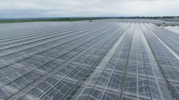 Pohled do skleníku přes střechu