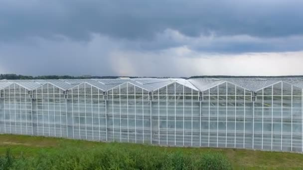 Boční pohled na skleníkových zvrásněný sekcí