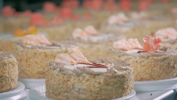 Kuchen In Der Backerei Zu Verzieren Arbeiter Die Dekoration Kuchen