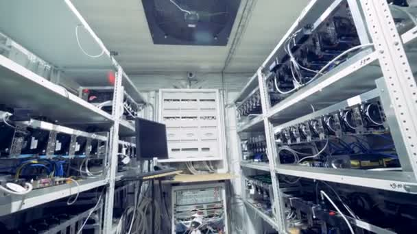 Биткоин видео фермы форекс готовый сайт