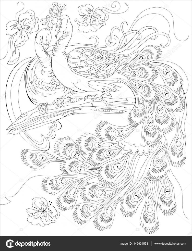 Black And White Seite zum Ausmalen. Fantasy zeichnen von Pfauen paar ...