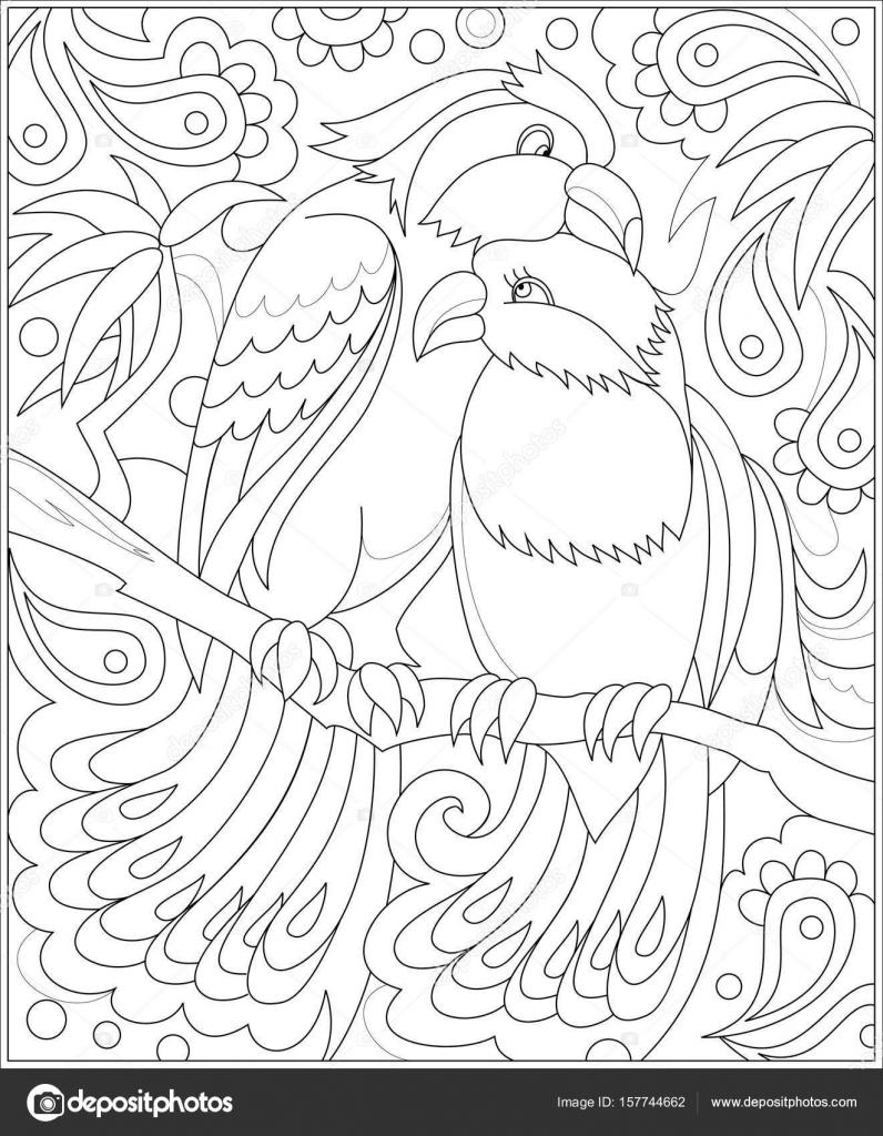 Página para colorear en blanco y negro. Dibujo de pareja de aves de ...