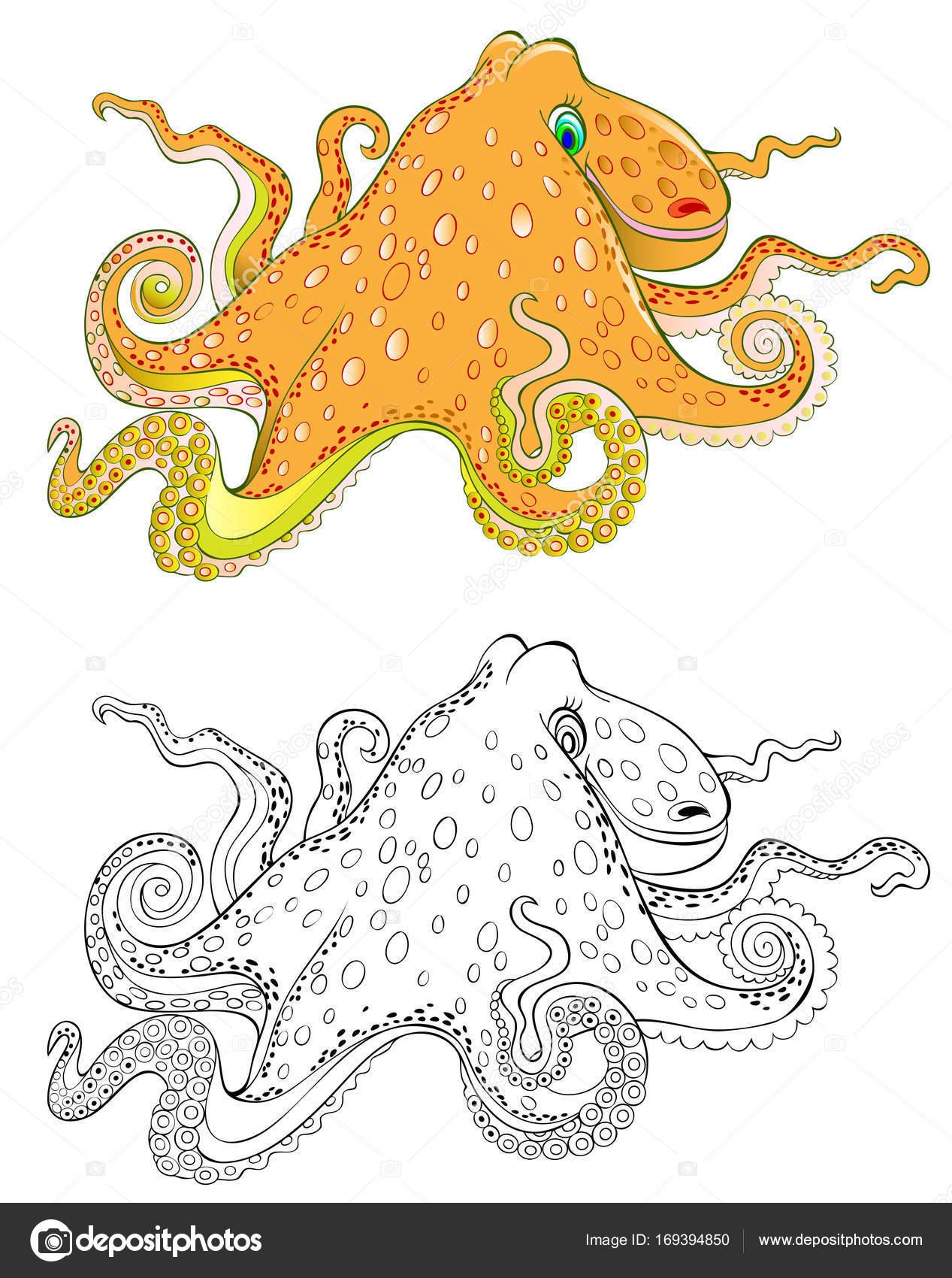 Bunt und schwarz-weiß-Muster von Octopus. Arbeitsblatt für Kinder ...