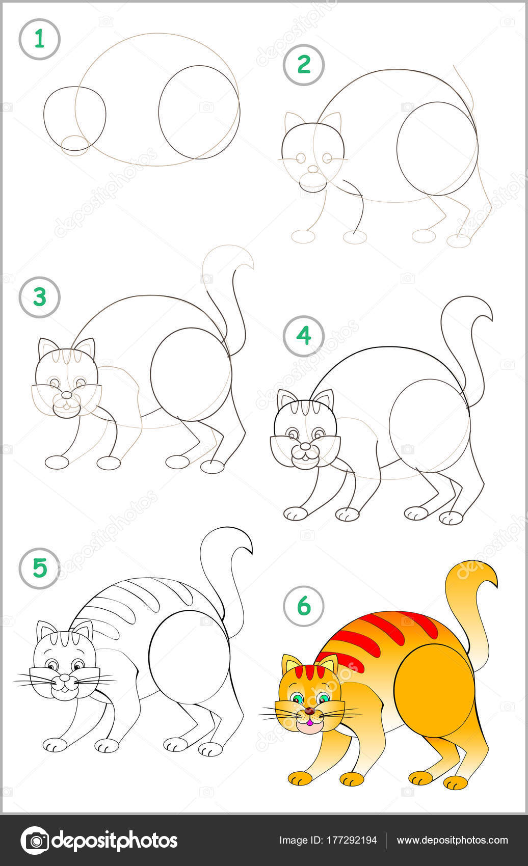 Dessins etapes coloriage chat - Comment dessiner un lynx ...