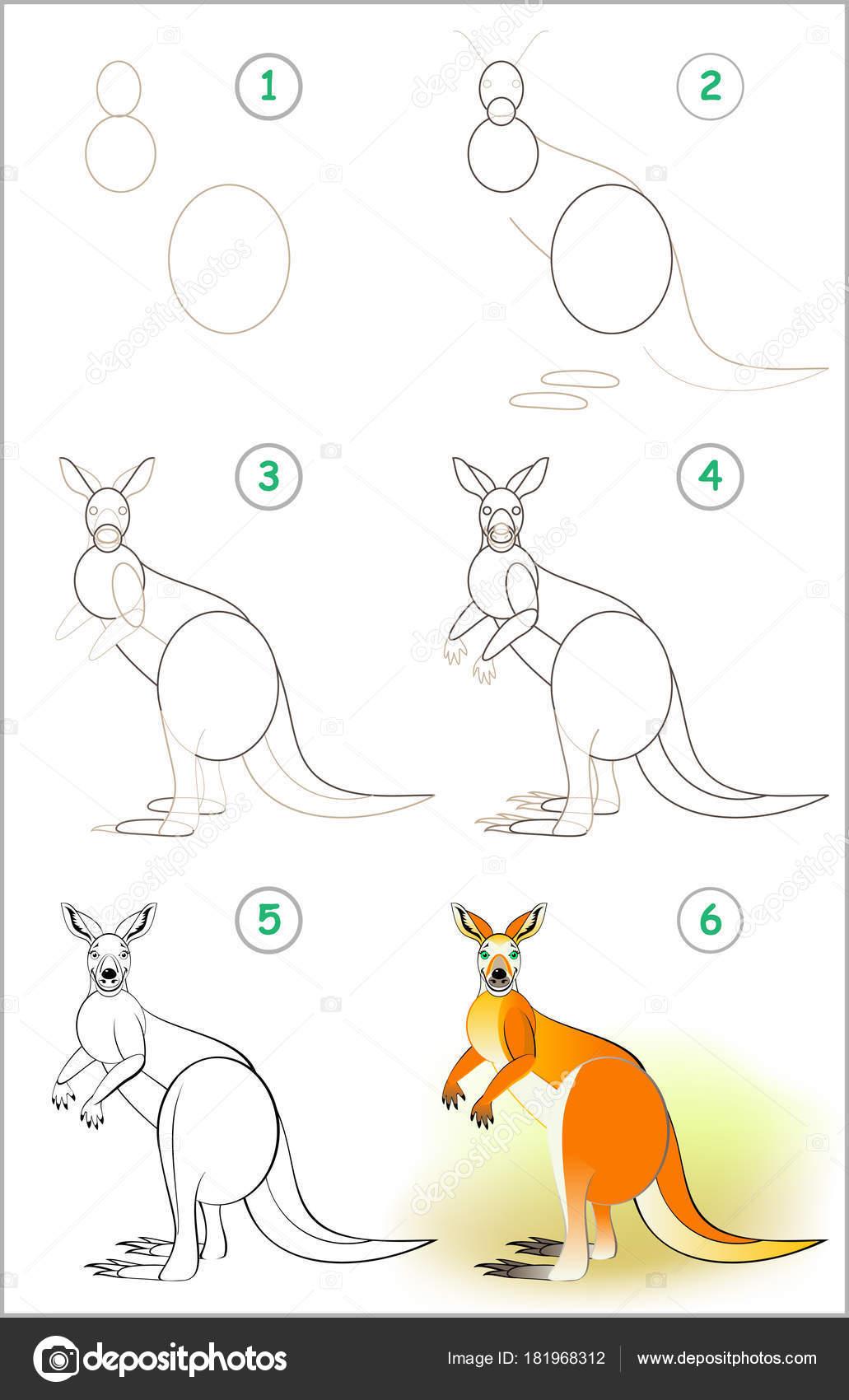 Str nka ukazuje jak krok krokem nau it kreslit roztomil - Dessiner un kangourou ...