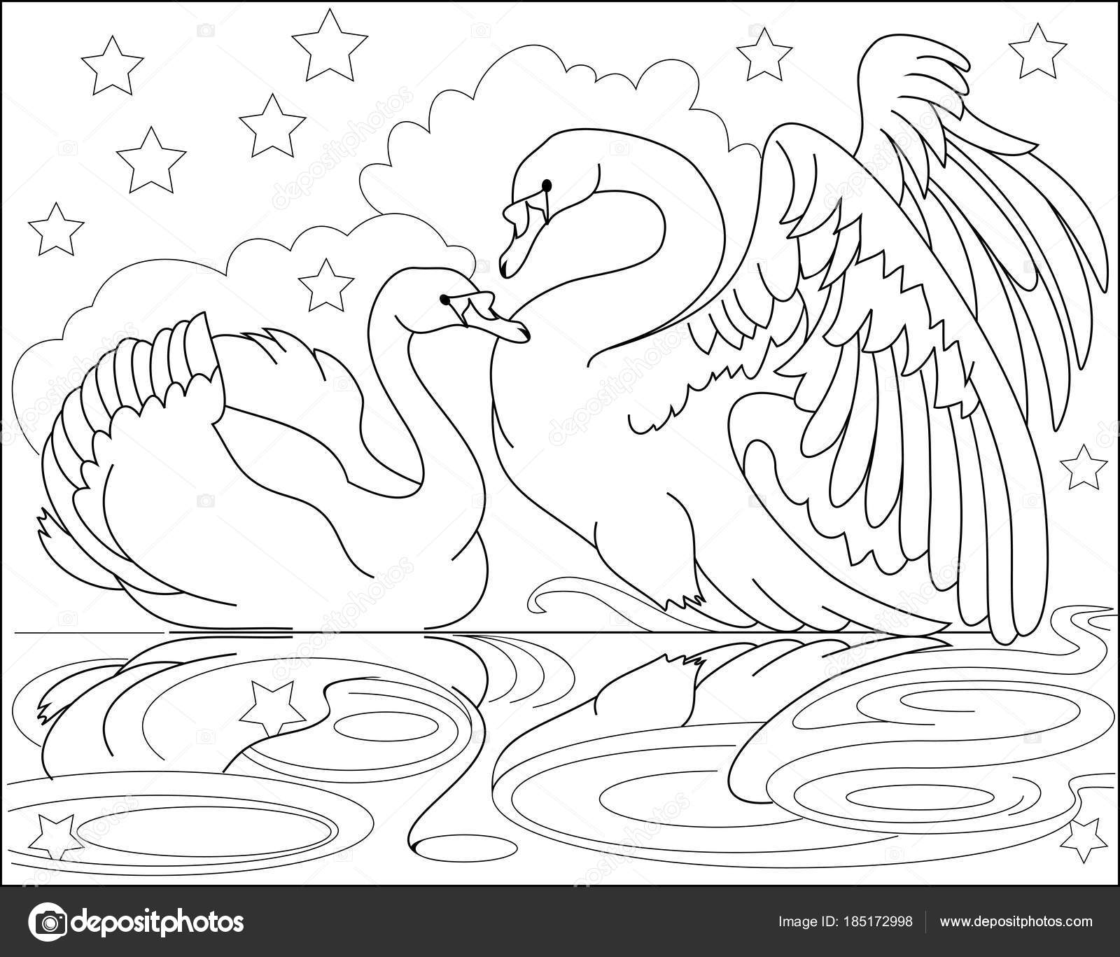 Black White Page Coloring Drawing Couple Beautiful Swans Worksheet ...