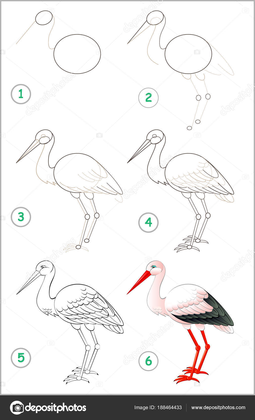 Page Shows How Learn Step Step Draw Stork Developing Children