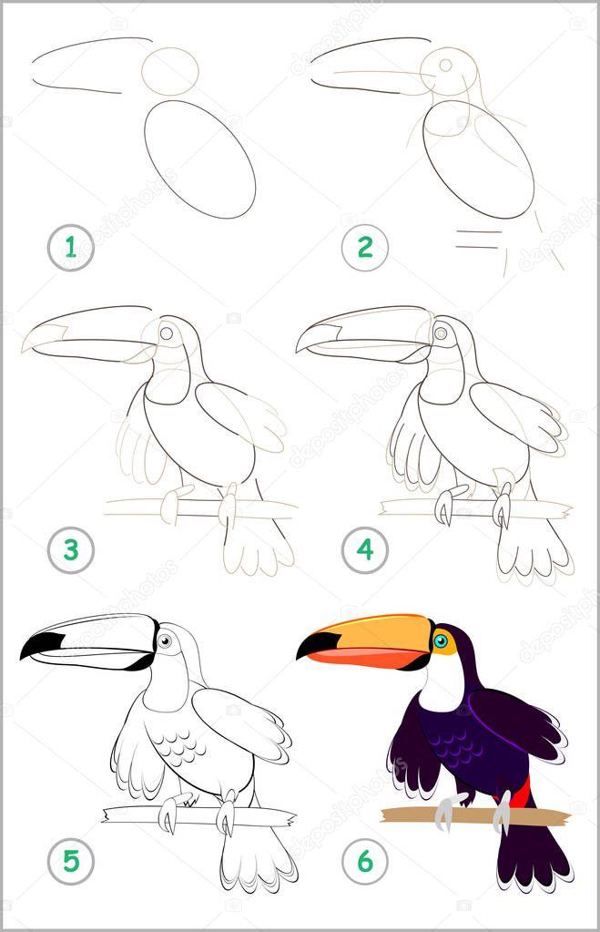 Como Desenhar Um Tucano Desenhos De Tucanos Para Imprimir E