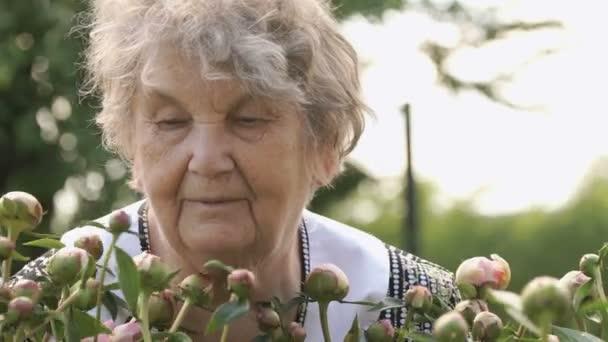 Starší žena na pozadí rostoucí pivoňky