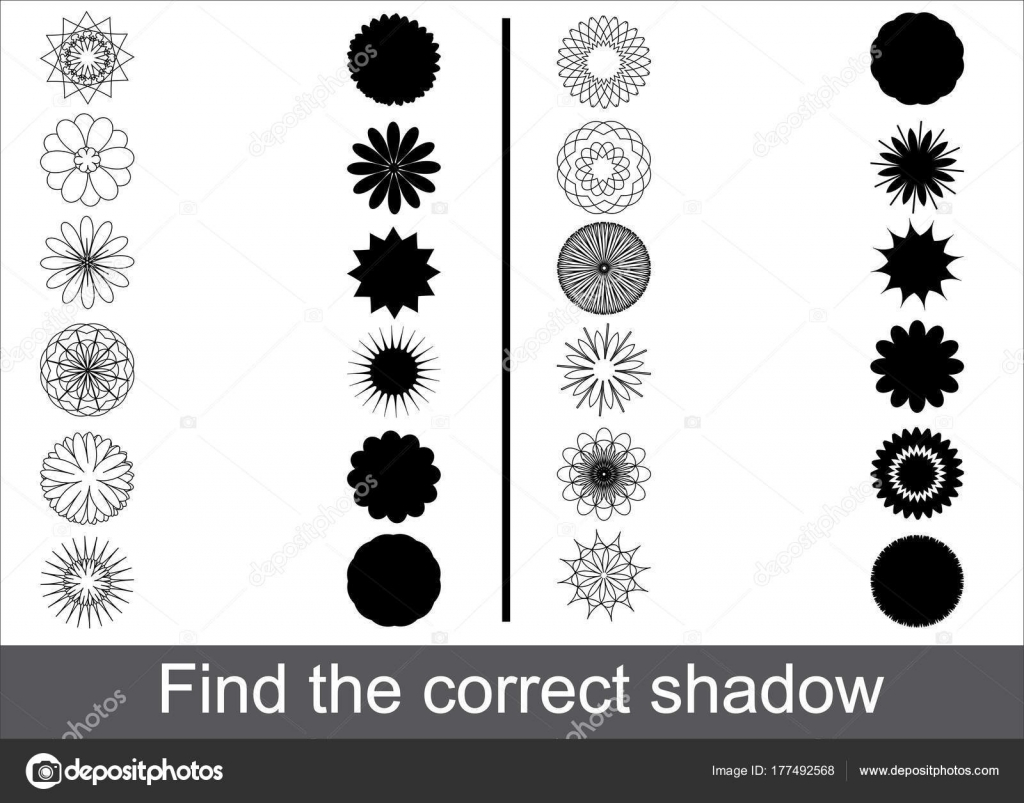 Cartoon Flowers White Black Colors Game Children Find Correct Shadow