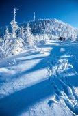 Lysé hoře v zimě Moravskoslezských Beskyd v České republice