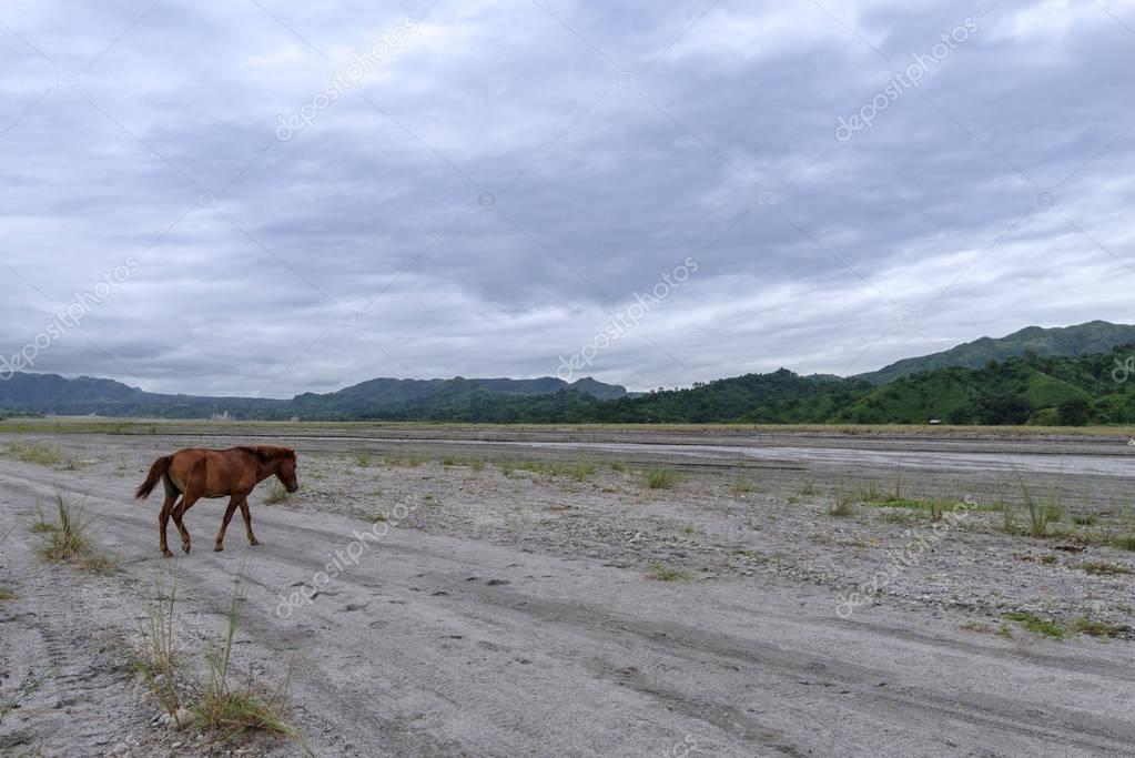 cloudy sky at Mt Pinatubo