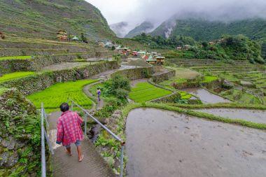 people walking at  Batad rice terrace  in Banaue